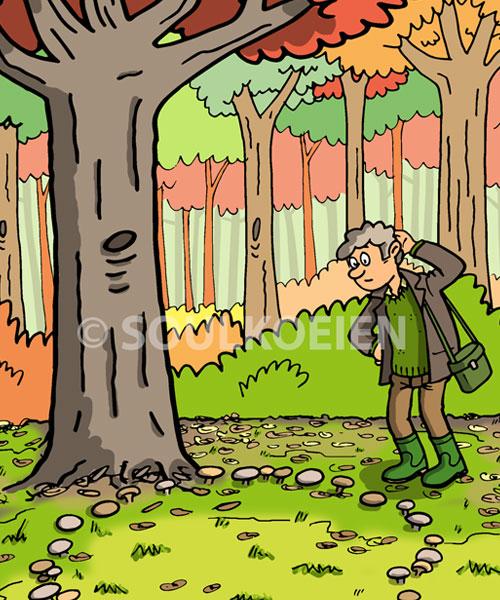 in-het-bos-1.jpg